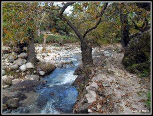 Φαράγγι του Φονιά στη Σαμοθράκη